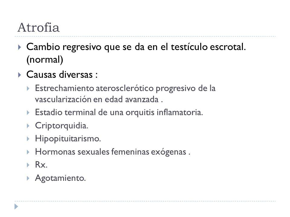 Atrofia Cambio regresivo que se da en el testículo escrotal. (normal)
