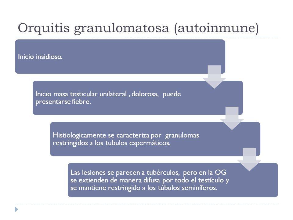 Orquitis granulomatosa (autoinmune)