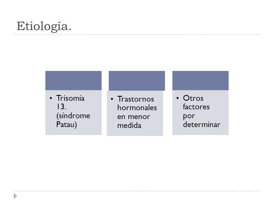 Etiología. Trisomía 13. (síndrome Patau)