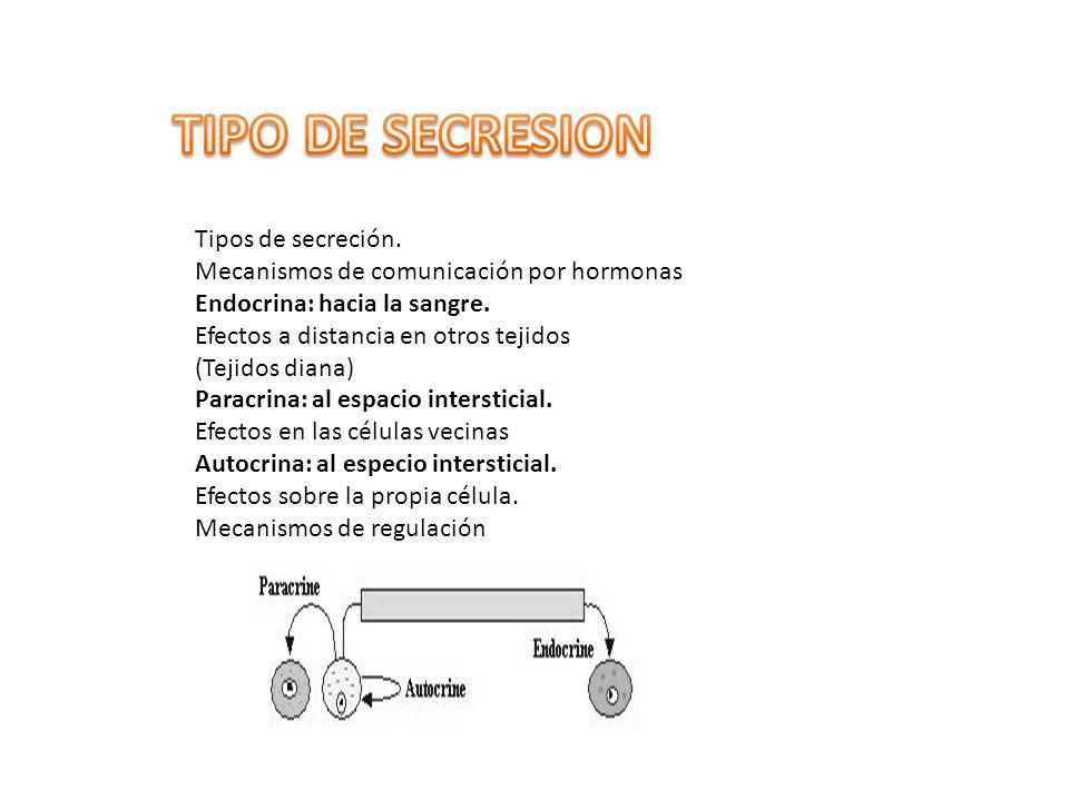 TIPO DE SECRESION Tipos de secreción.