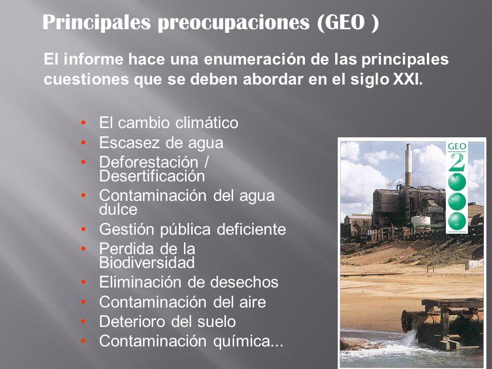 Principales preocupaciones (GEO )