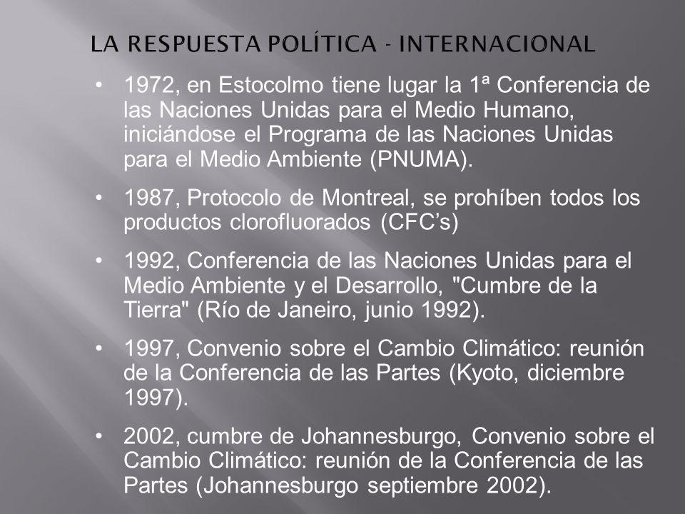 LA RESPUESTA POLÍTICA - INTERNACIONAL
