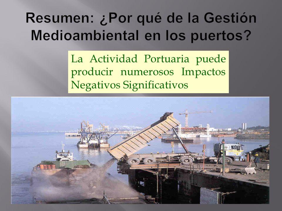 Resumen: ¿Por qué de la Gestión Medioambiental en los puertos