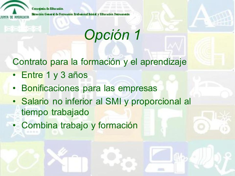 Opción 1 Contrato para la formación y el aprendizaje Entre 1 y 3 años
