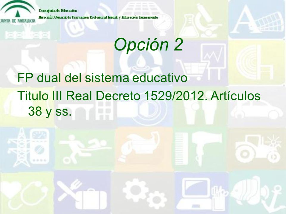 Opción 2 FP dual del sistema educativo