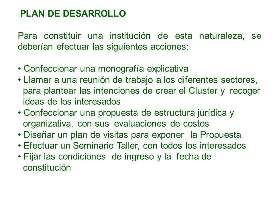 PLAN DE DESARROLLO Para constituir una institución de esta naturaleza, se deberían efectuar las siguientes acciones: