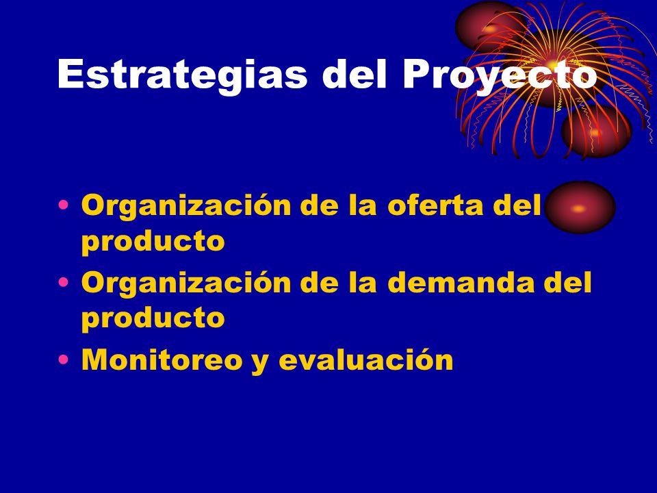 Estrategias del Proyecto