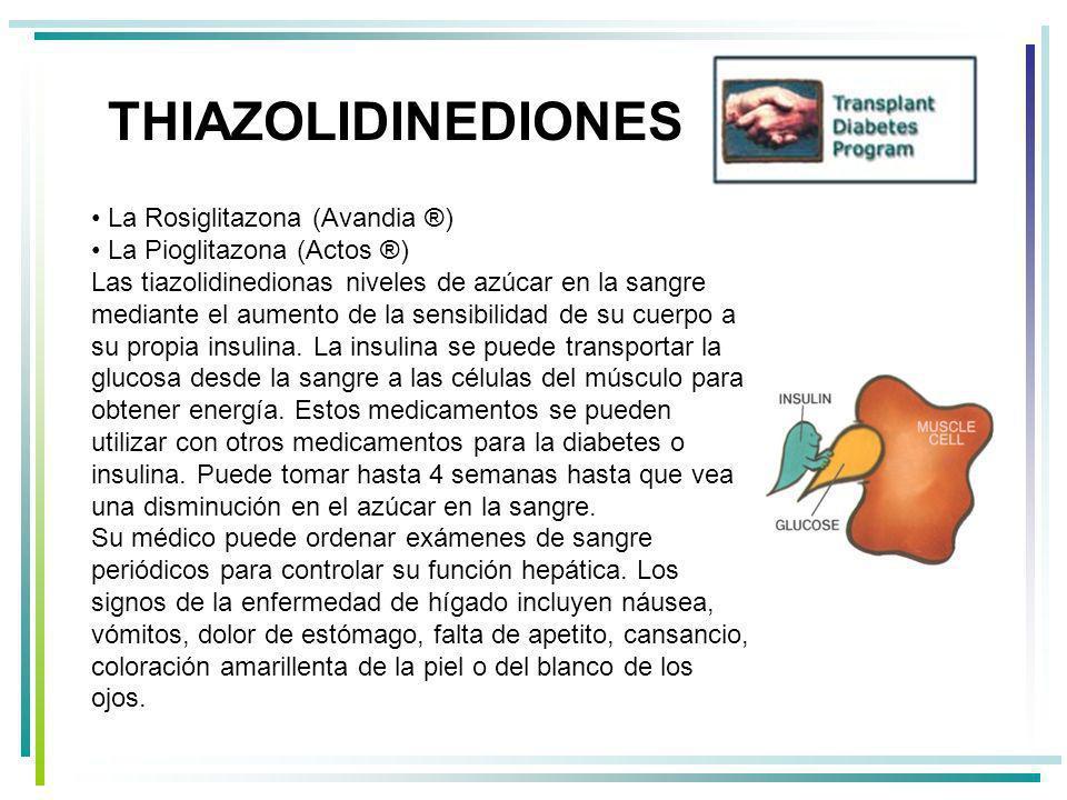 THIAZOLIDINEDIONES La Rosiglitazona (Avandia ®)