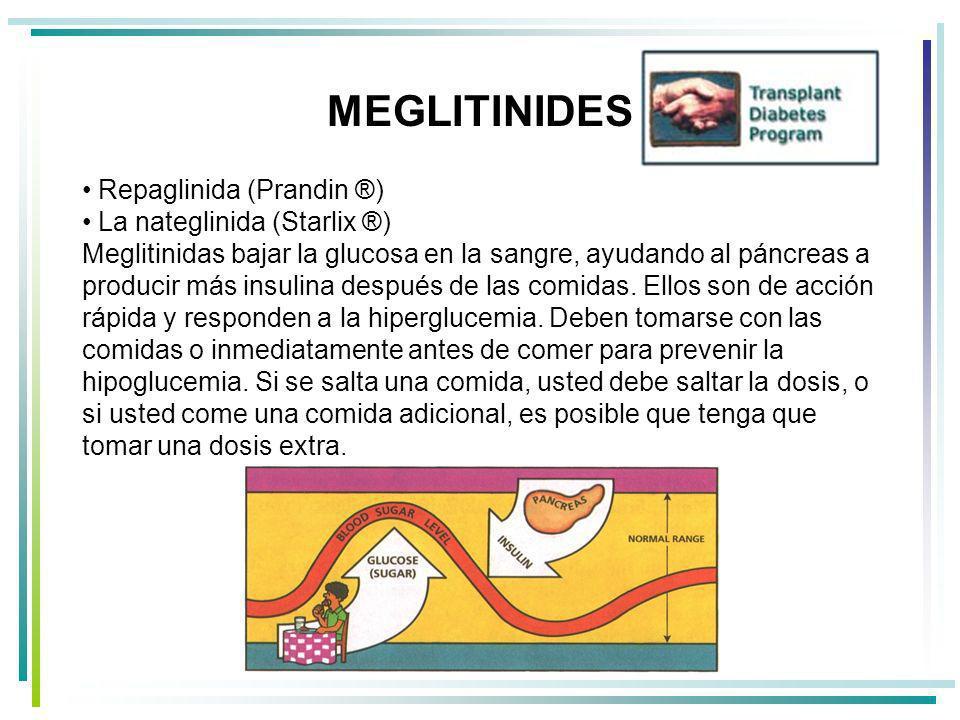 MEGLITINIDES Repaglinida (Prandin ®)