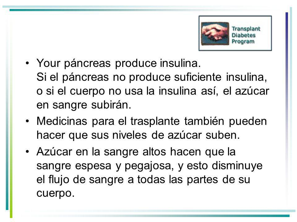 Your páncreas produce insulina