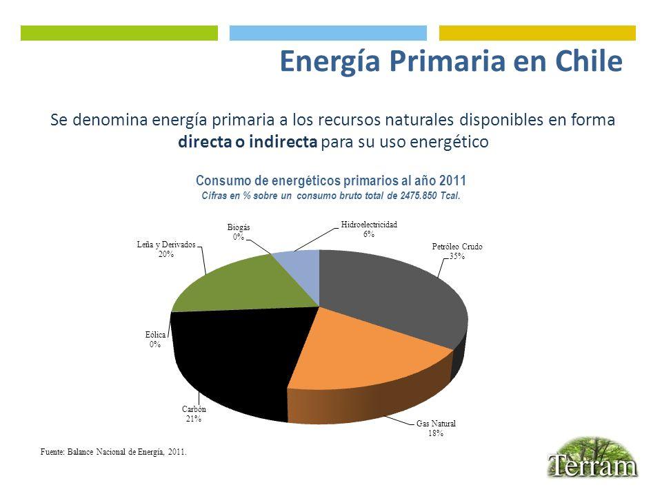 Energía Primaria en Chile