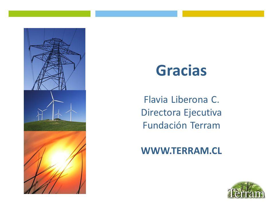 Gracias Flavia Liberona C. Directora Ejecutiva Fundación Terram
