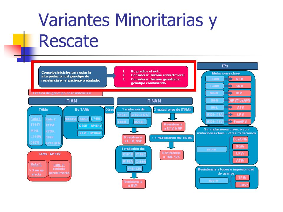 Variantes Minoritarias y Rescate