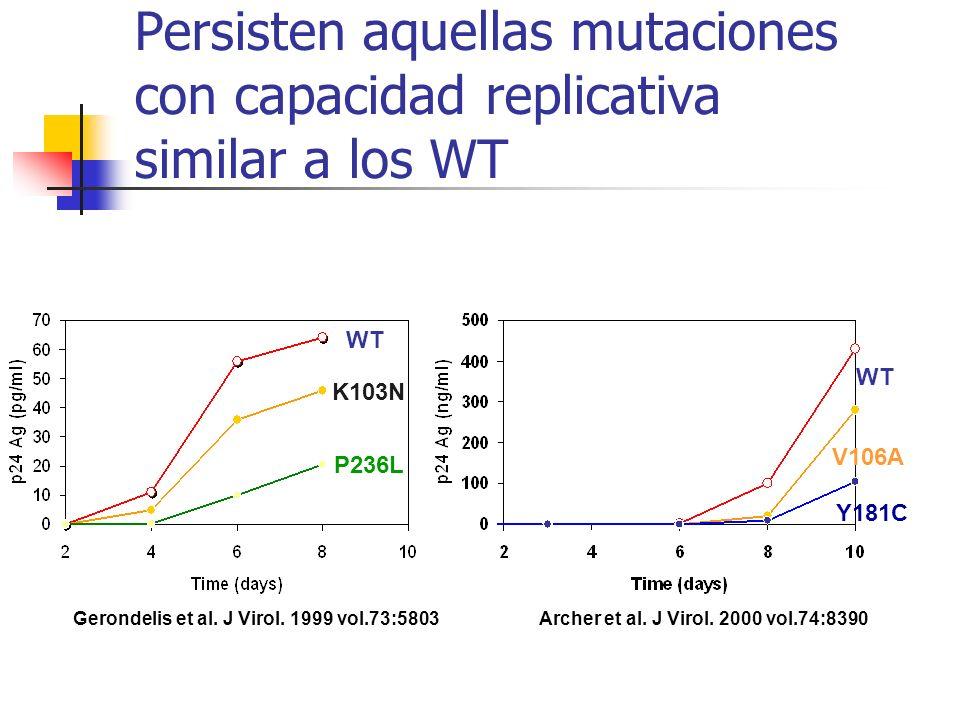 Persisten aquellas mutaciones con capacidad replicativa similar a los WT