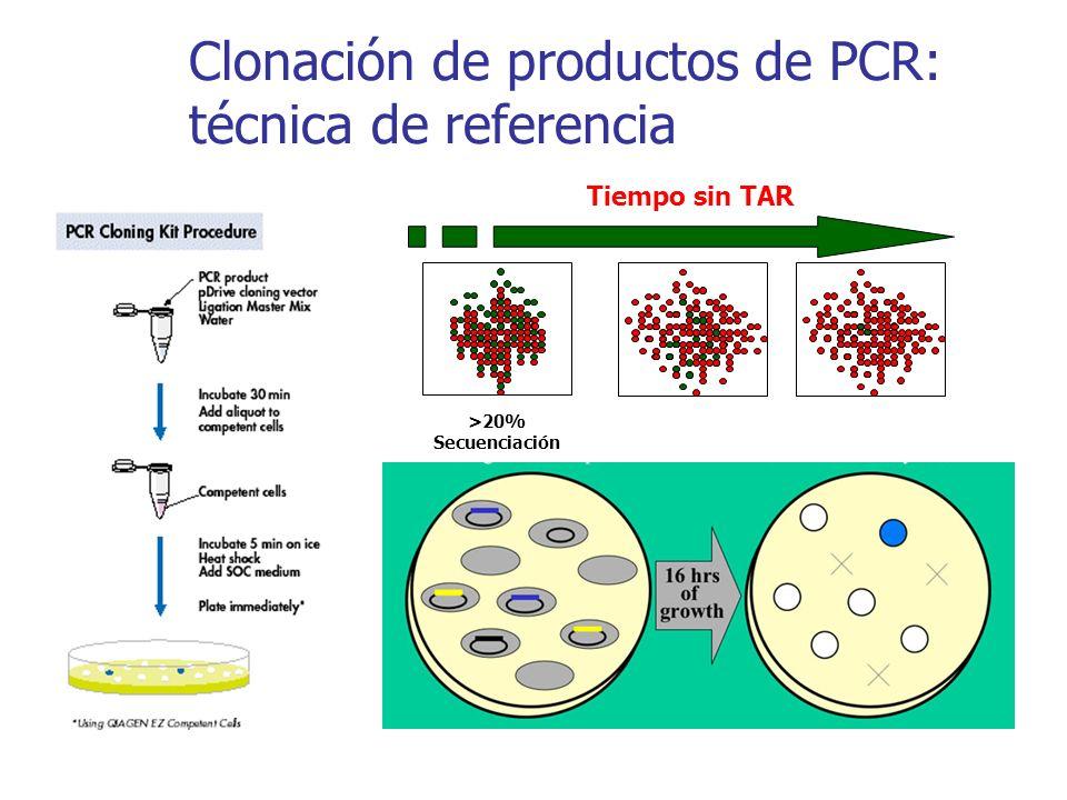 Clonación de productos de PCR: técnica de referencia