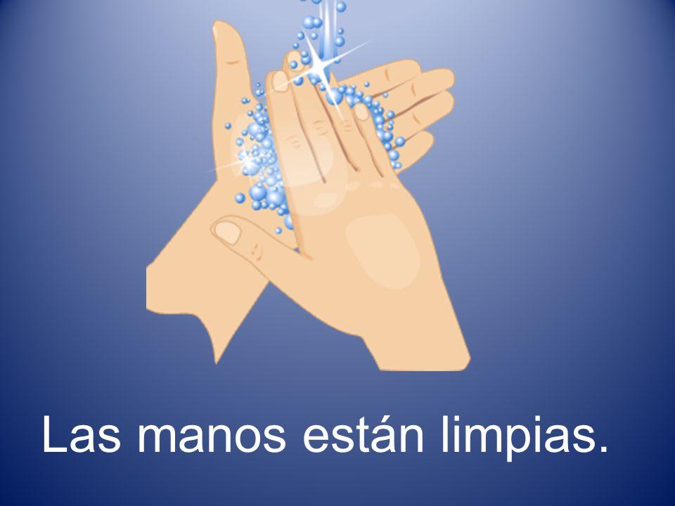 Las manos están limpias.