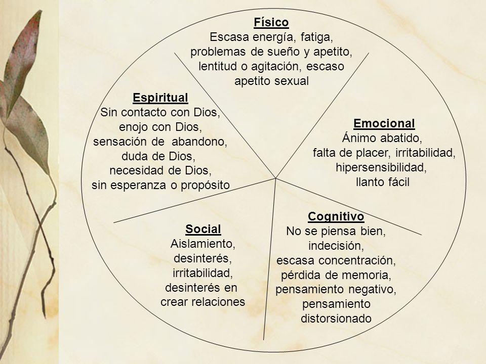 Físico Espiritual Emocional Cognitivo Social