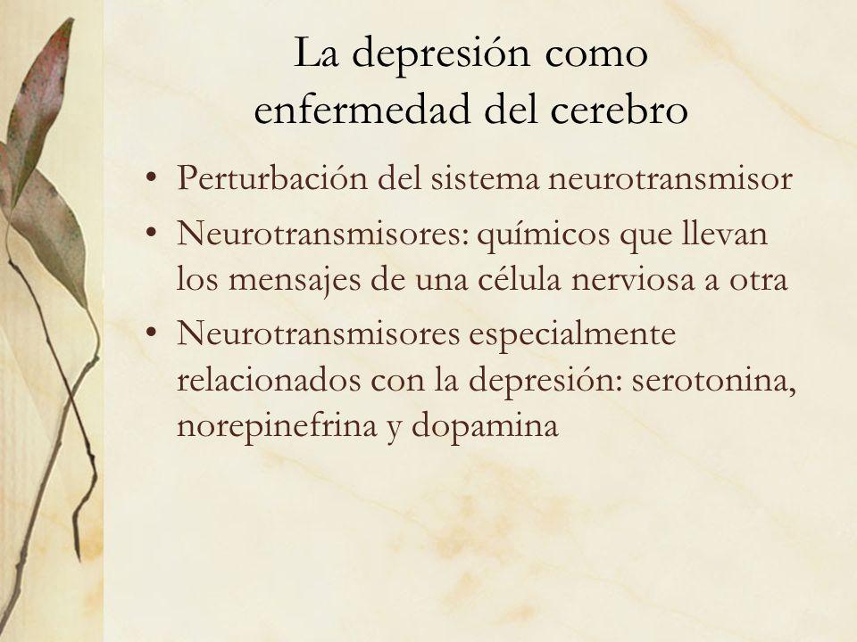 La depresión como enfermedad del cerebro