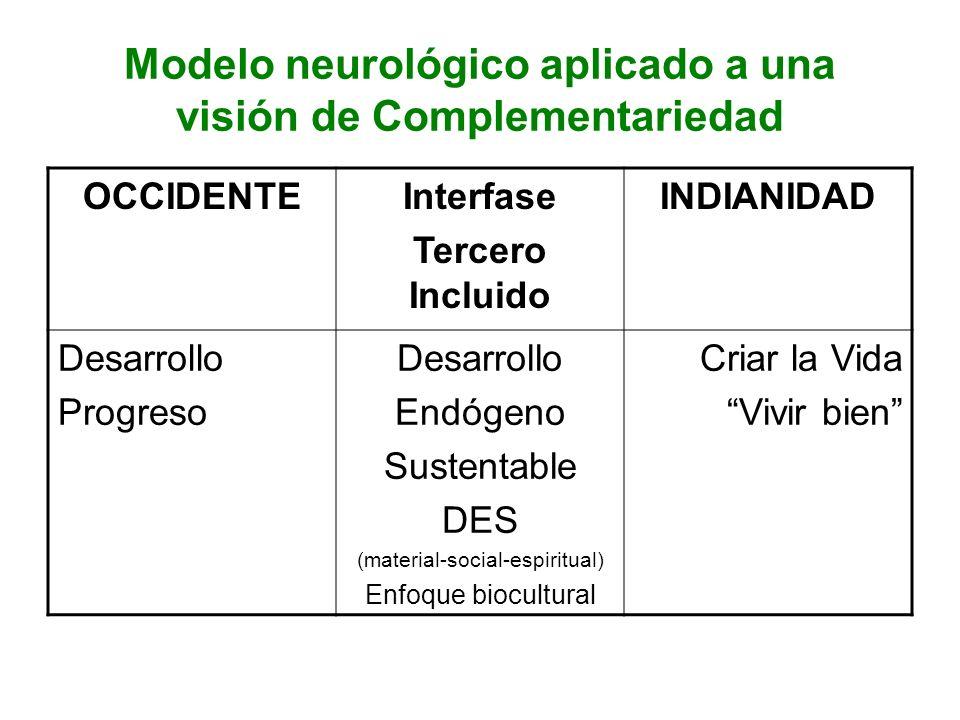 Modelo neurológico aplicado a una visión de Complementariedad