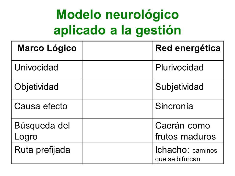 Modelo neurológico aplicado a la gestión
