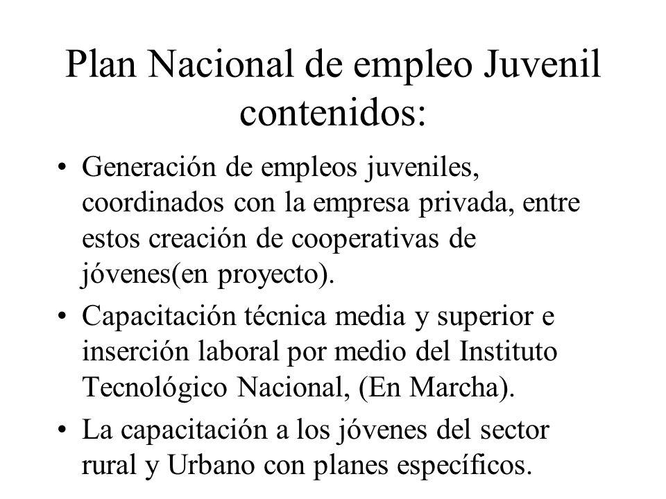 Plan Nacional de empleo Juvenil contenidos: