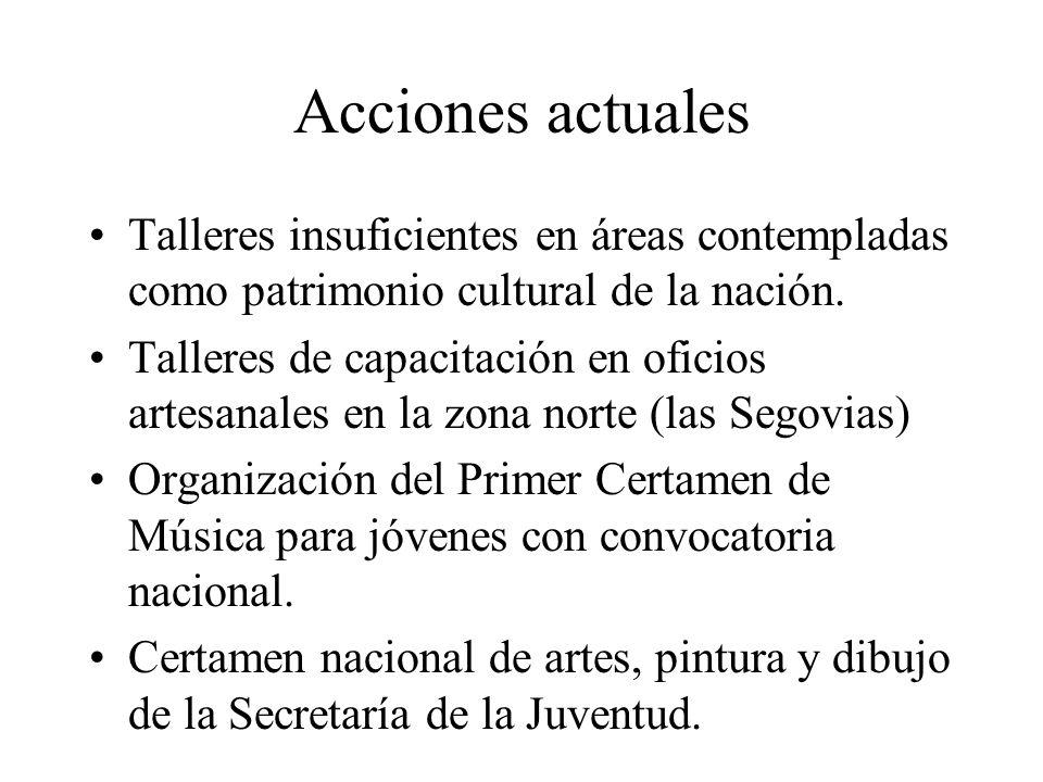 Acciones actualesTalleres insuficientes en áreas contempladas como patrimonio cultural de la nación.