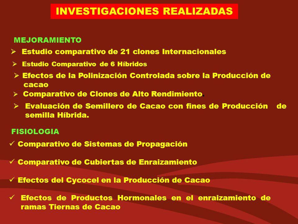 INVESTIGACIONES REALIZADAS