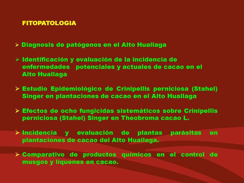 FITOPATOLOGIA Diagnosis de patógenos en el Alto Huallaga.