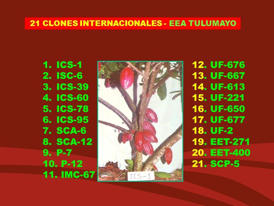ICS-1 12. UF-676 ISC-6 13. UF-667 ICS-39 14. UF-613 ICS-60 15. UF-221