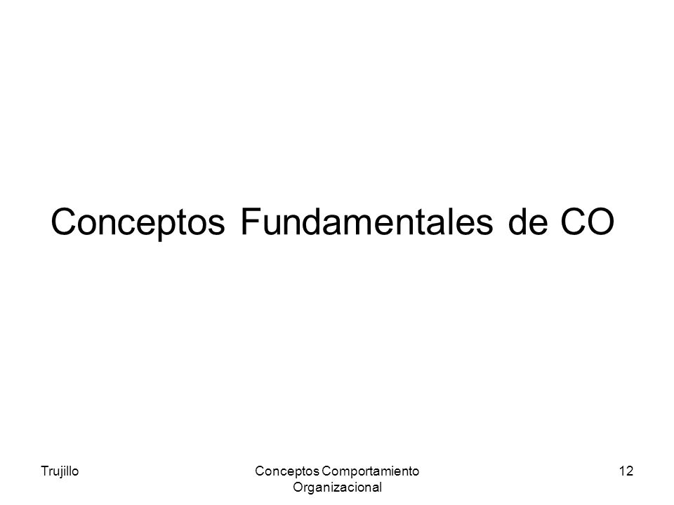 Conceptos Fundamentales de CO