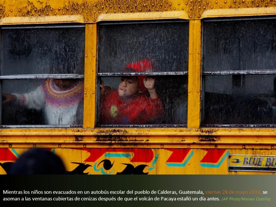Mientras los niños son evacuados en un autobús escolar del pueblo de Calderas, Guatemala, viernes 28 de mayo 2010, se asoman a las ventanas cubiertas de cenizas después de que el volcán de Pacaya estalló un día antes.