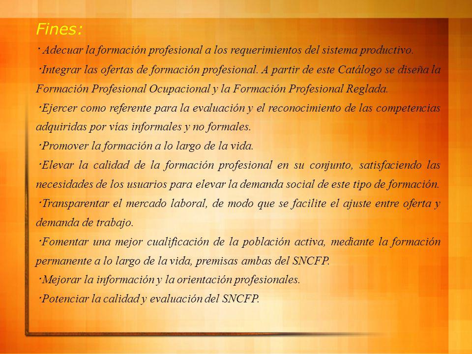 Fines: ・Adecuar la formación profesional a los requerimientos del sistema productivo.