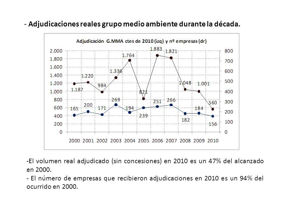 - Adjudicaciones reales grupo medio ambiente durante la década.