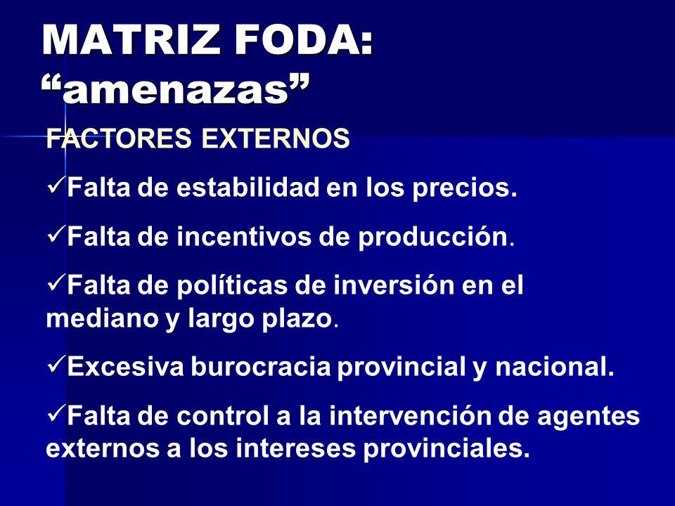 MATRIZ FODA: amenazas