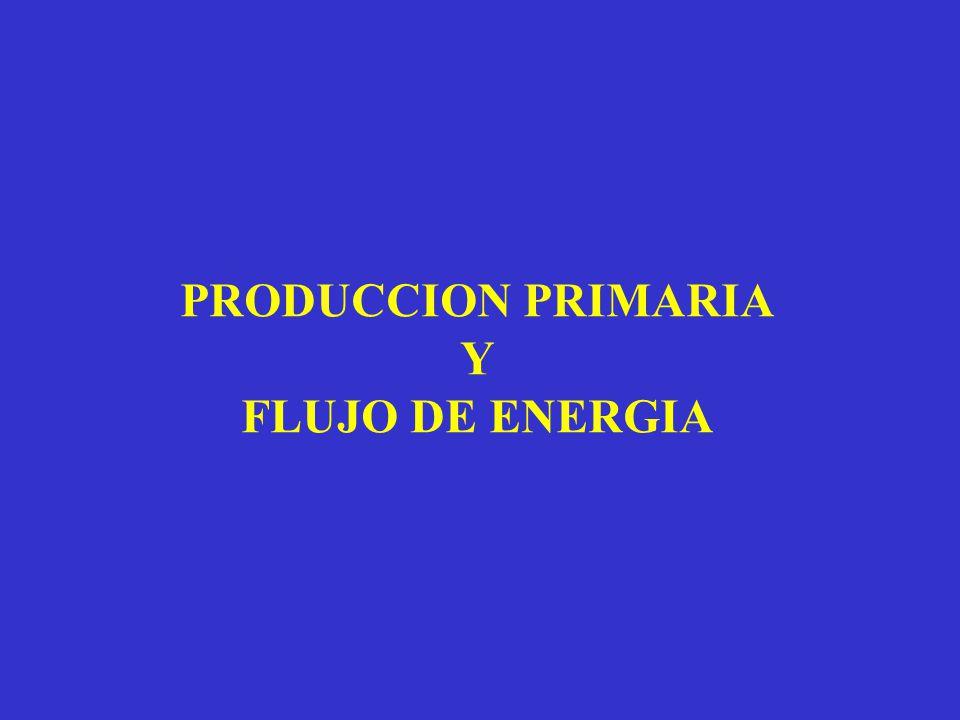 PRODUCCION PRIMARIA Y FLUJO DE ENERGIA