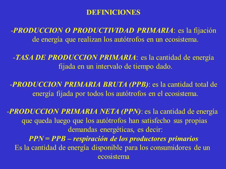 PPN = PPB – respiración de los productores primarios