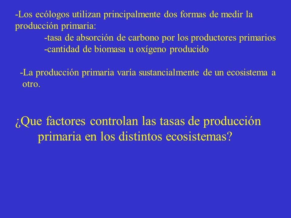 ¿Que factores controlan las tasas de producción