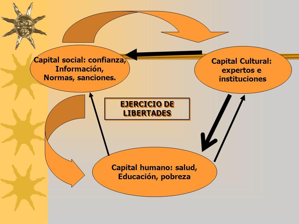 Capital social: confianza, EJERCICIO DE LIBERTADES