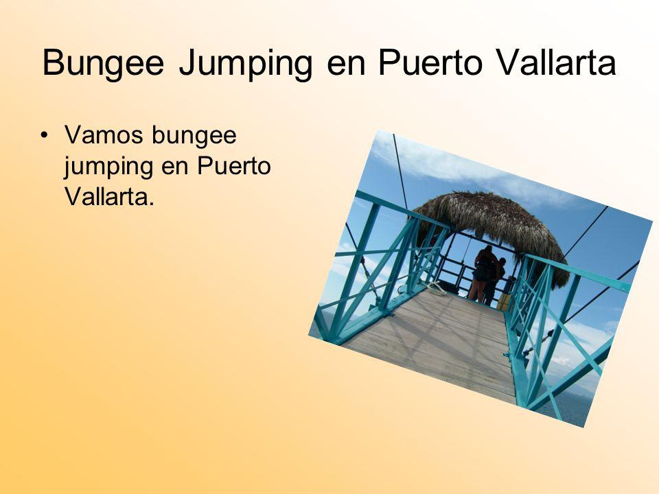 Bungee Jumping en Puerto Vallarta