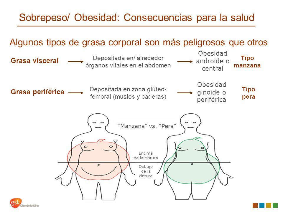 bajar grasa abdomen rapido