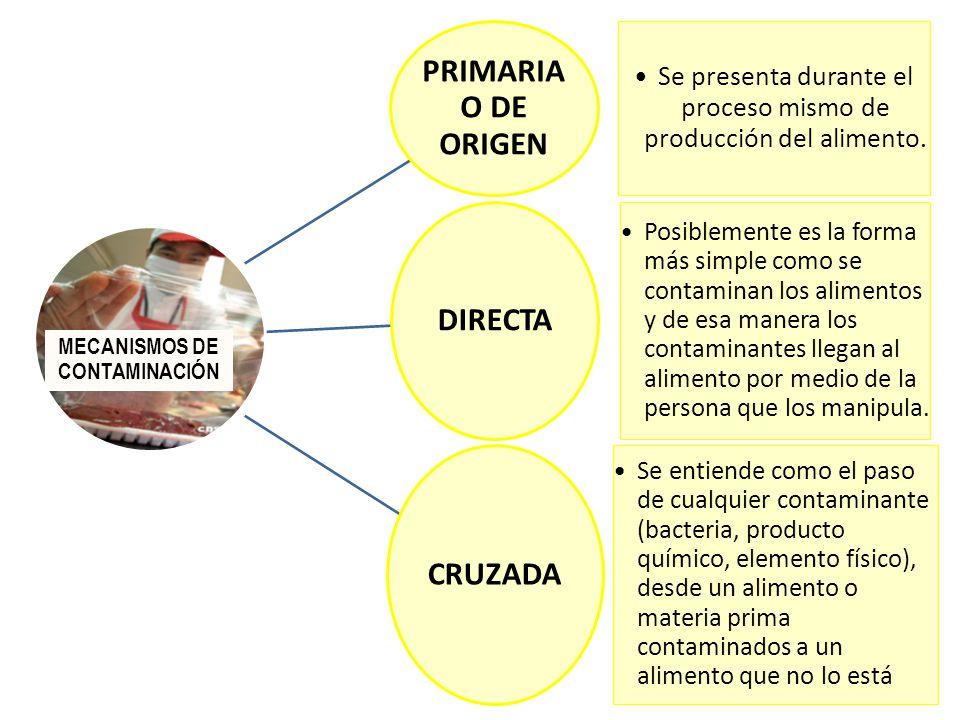 Javier eduardo curo yllaconza licenciado en nutrici n for Procesos de produccion de alimentos
