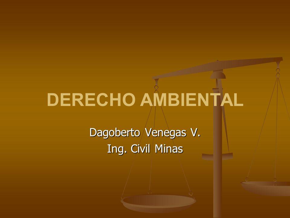 Dagoberto Venegas V. Ing. Civil Minas