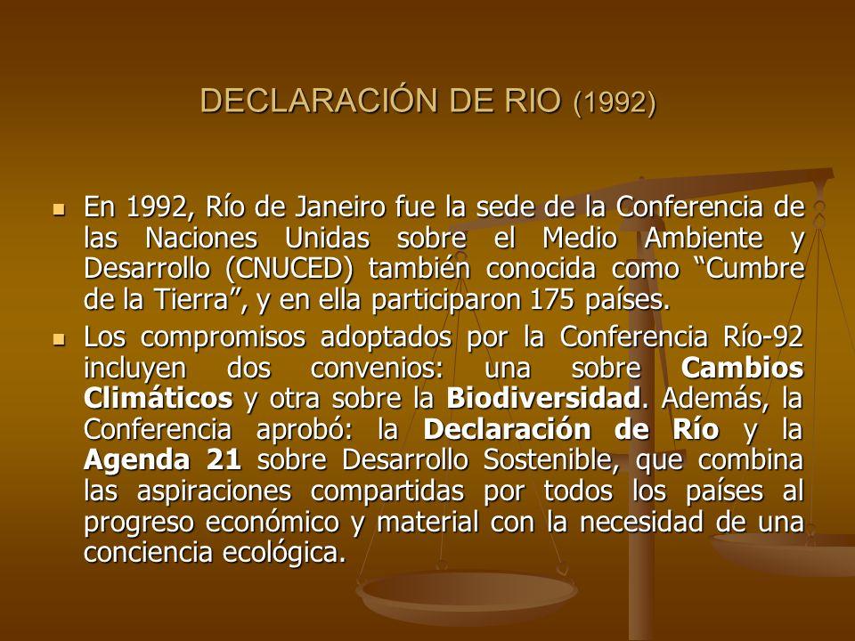 DECLARACIÓN DE RIO (1992)