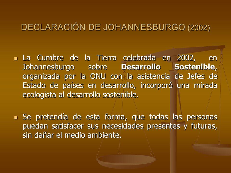 DECLARACIÓN DE JOHANNESBURGO (2002)