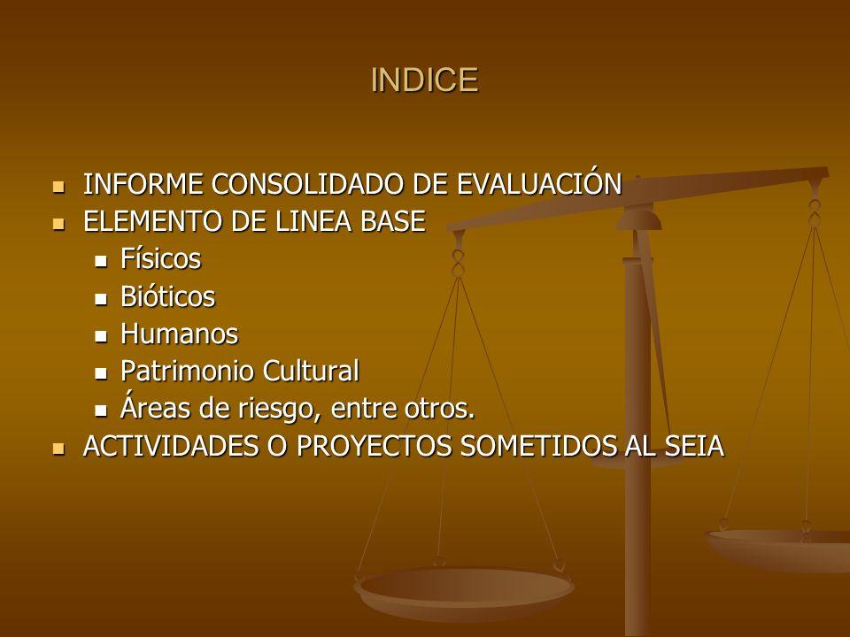 INDICE INFORME CONSOLIDADO DE EVALUACIÓN ELEMENTO DE LINEA BASE