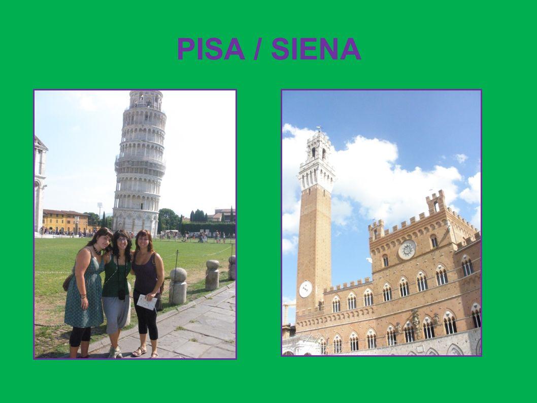 PISA / SIENA