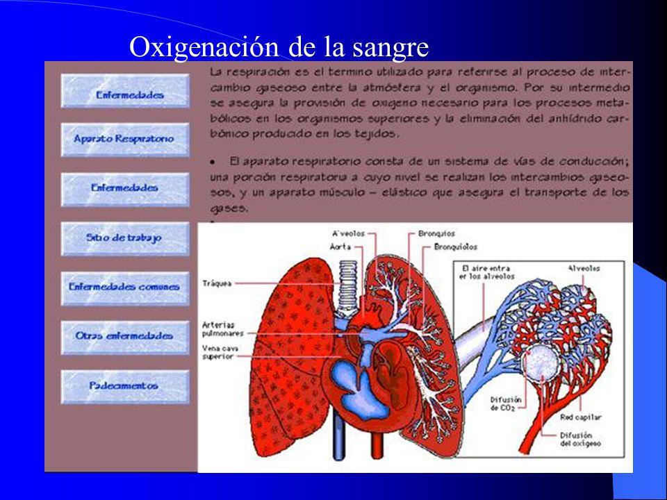 Oxigenación de la sangre