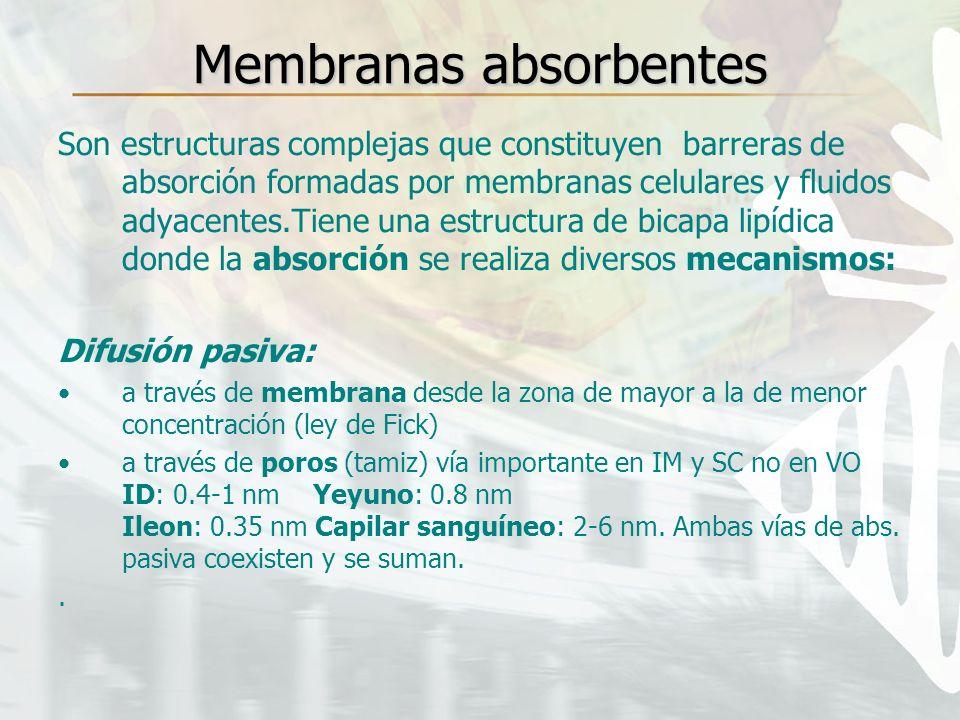 Membranas absorbentes