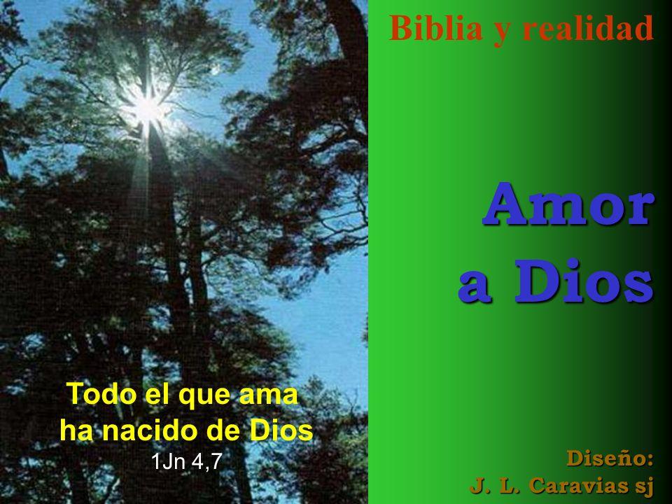 Biblia y realidad Amor a Dios Diseño: J. L. Caravias sj