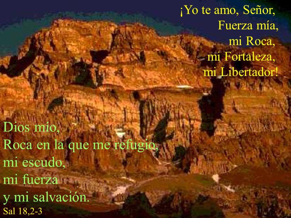 Roca en la que me refugio, mi escudo, mi fuerza y mi salvación.